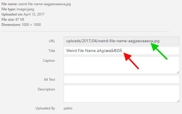 Tự động xóa bỏ các ký tự đặc biệt khi tải hình ảnh lên WordPress