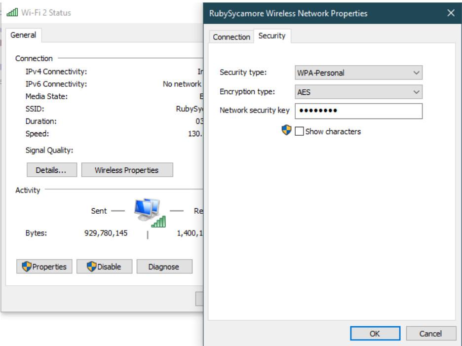 Windows Show Network Password