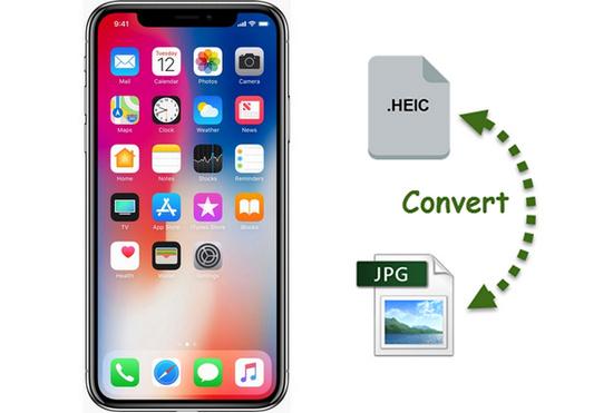 Cách chuyển đổi HEIC sang JPG online, trên Mac, iPhone, Android và Windows
