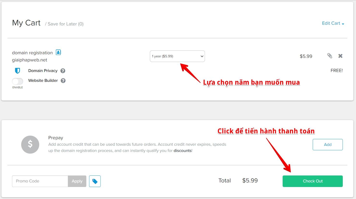 thanh toán domain quốc tế